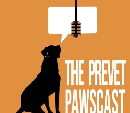 PreVet Pawscast: 'Staying Power' Feat. Dr. Stephanie Jones